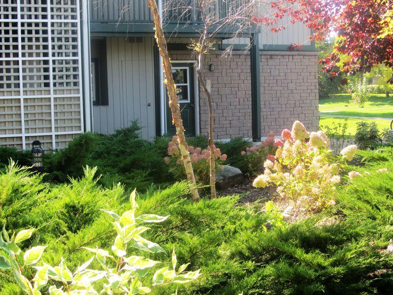 675 Johnston Park Avenue, Collingwood, Ontario  L9Y 5C7 - Photo 2 - RP9931785026