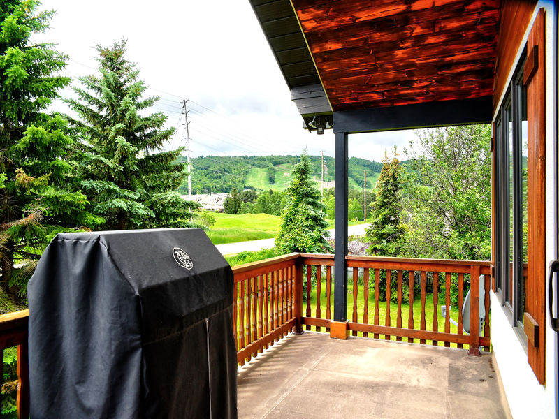 132 Brooker Blvd, Blue Mountains, Ontario  L9Y 0L4 - Photo 39 - RP9192110411