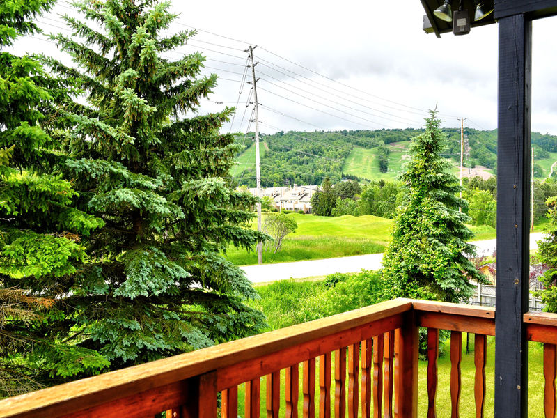 132 Brooker Blvd, Blue Mountains, Ontario  L9Y 0L4 - Photo 40 - RP9192110411