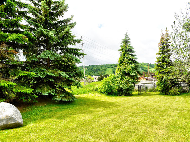 132 Brooker Blvd, Blue Mountains, Ontario  L9Y 0L4 - Photo 42 - RP9192110411